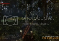 Incredible Combat Animations, Atmosphere in New Witcher 2 Footage